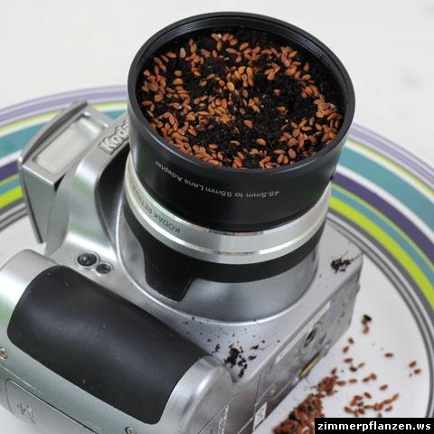 kamera mit kressesamen